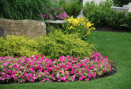 How to Make a Flower Bed - Northside Tool Rental